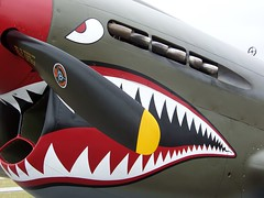 CURTIS P-40  FIGHTER * Explore # 183 (Bob the Real Deal) Tags: shark fighter kodak aviation military navy killer guns marines airforce warbirds warbird usarmy bigguns sharkteeth warhawk ww11 curtisp40 militaryplanes watsonvilleflyin