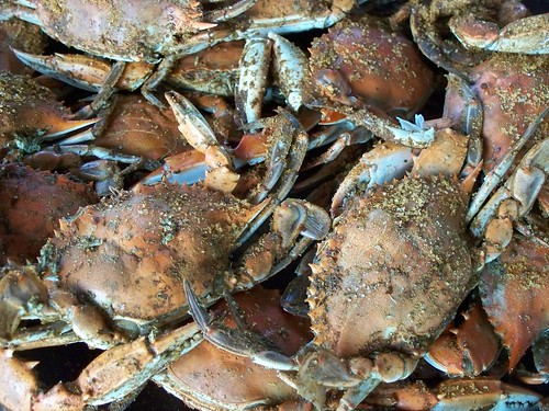 Crabs in Old Bay