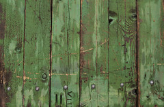 Green Wooden Background (sonofsteppe) Tags: county street wood old city urban detail green texture wet outdoors 50mm design wooden hungary pattern floor panel natural background surface structure dirty explore manmade weathered material damaged exploration plank mundane cracked striped carpentry hardwood solid rivet gyula romannumeral stability knotted grooved sonofsteppe pusztafia bks
