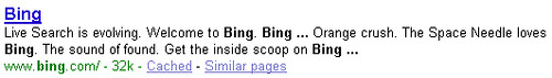 bing-google-organic-listing-june3-2009