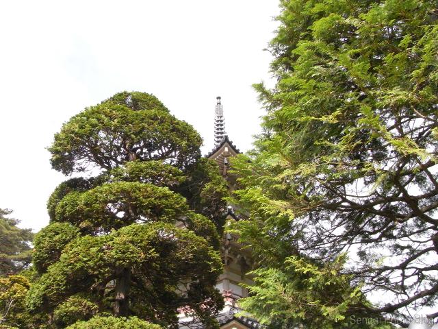 Pagoda-Through-the-Trees