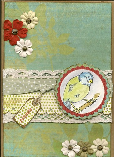 phinny card