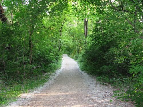 061409_wood_lake_path