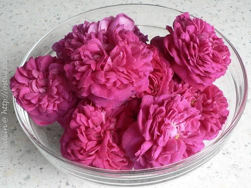 Rose-de-Rescht-Blüten