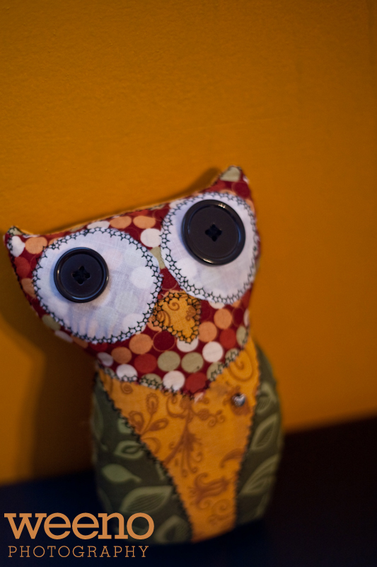Tuks Owl (2 of 5)
