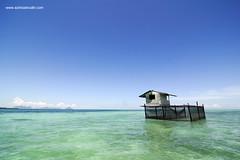 the despair (azimzainudin.com) Tags: travel sea tourism landscape asian island scenery asia locals place south laut culture documentary lifestyle east malaysia backpack destination local gypsy malaysian sabah mabul azim bajau zainudin wwwazimzainudincom lpemptiness