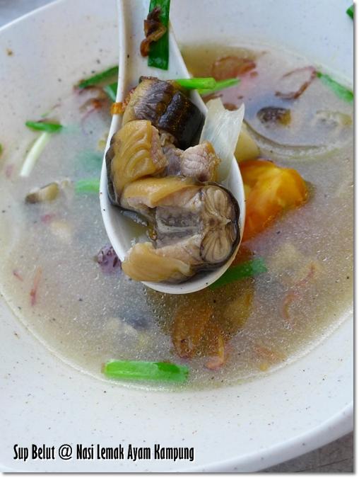 Sup Belut