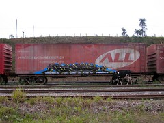 Holy Cow! (KING YNOT LIVES) Tags: brazil brasil train graffiti cow all miami freight atomik americalatinalogistica