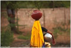 In search of Water.. . (Naseer Ommer) Tags: water women pot rajasthan naseerommer dpintl discoverplanetinternational