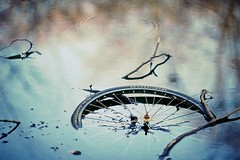 Marathon (generalstussner) Tags: reflection abandoned nature water bike bicycle canon lost garbage branch bokeh ripple marathon branches rusty tire drop full ii 5d ripples f2 fullframe 135mm fahrradreifen ef135mmf2l 135f2l ef135f2l 5dmarkii