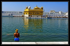 The Golden Temple - Shri Harmandir Sahib, Amritsar (Tilak Haria) Tags: india punjab amritsar sikhism goldentemple holyplace pratibimbsangli shriharmandirsahib mygearandme mygearandmepremium mygearandmebronze mygearandmesilver