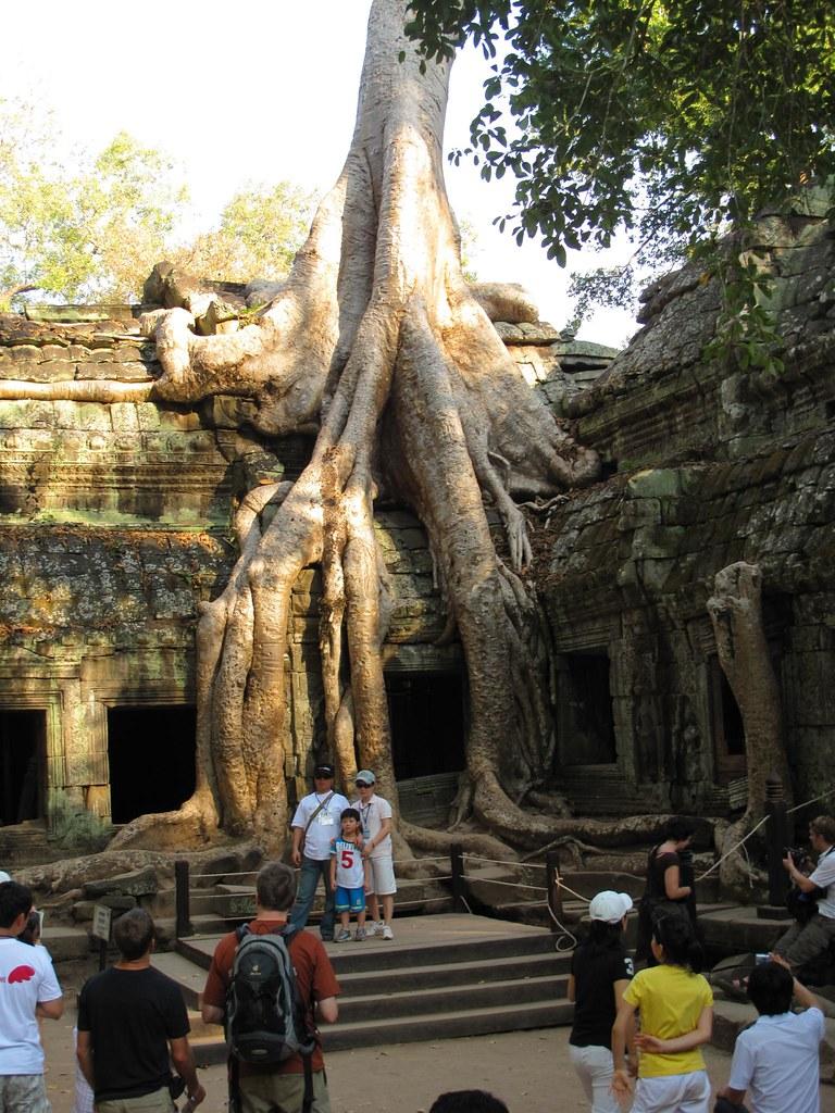 Ta Prohm 10 -- the Tomb Raider temple