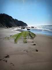 Beach at Schooner Gulch (Bobbie) Tags: california beach mendocino schoonergulch