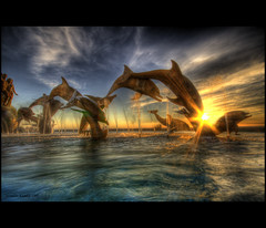 Mazatlan Dolphins chasing the sunset (Jerimias Quadil) Tags: sunset clouds mexico bluesky explore dolphins karma mazatlan jq leapingdolphins sigma1020mmf456exdchsm twtme hdrskies goldenrays aplusphoto betterthangood theperfectphotographer jerimiasquadil promastercircularpolarizing andtheloveaffaircontinues highestposition2onexplore021609