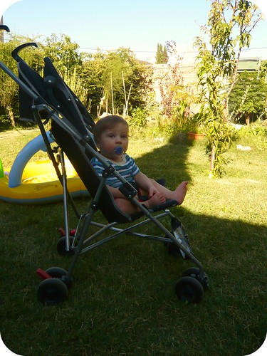 Milo en verano