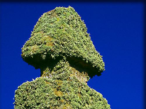 De musgo y piedra