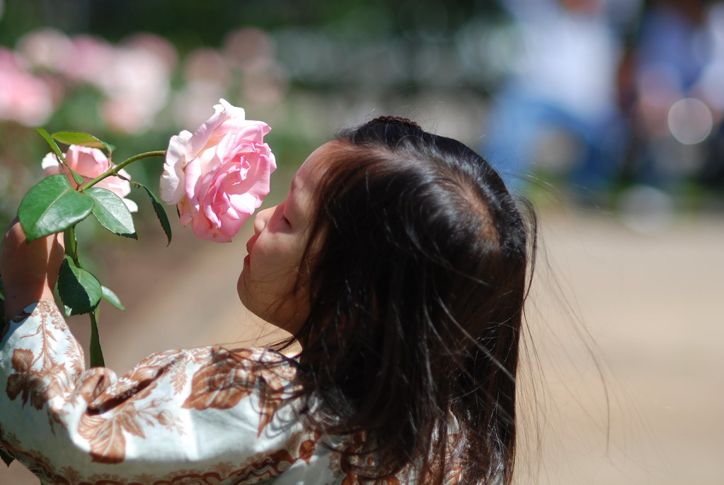 Take time to stop and smell the roses...