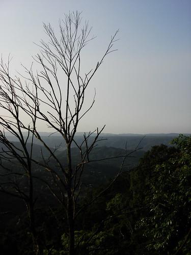 2009-5-1 新竹秘密基地 028
