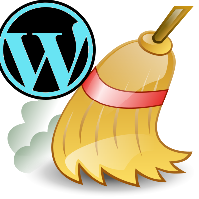 cleaning wp