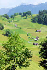 Lucern Farms (cwgoodroe) Tags: sun mountain lake snow alps green church statue ferry fairytale swimming switzerland boat europe locals suisse swiss sunny location farms movieset luce swissalps lucern medivil beerpasture