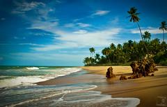 Coqueirinho Beach - PB