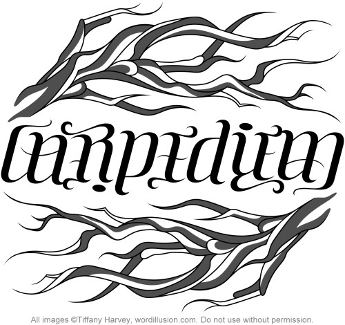 "A custom ambigram of the words ""Carpe Diem"", created for a tattoo design."
