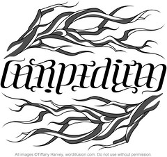 """Carpe Diem"" Ambigram"