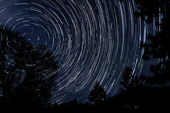 Celestial Clockwork (DanB.) Tags: california longexposure tree night stars bush stacked iso1600 startrails pinehurst startrail sequioanationalforest