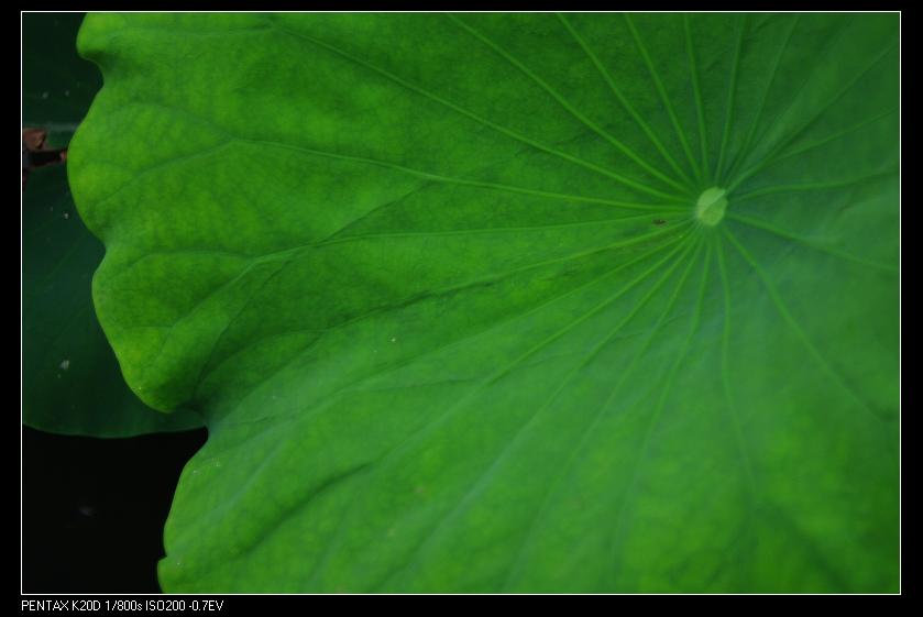 2010/05/24 E.P.S 35-70mm f2.5-3.5 拍荷!