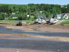 Bay of Fundy -Alma, NB