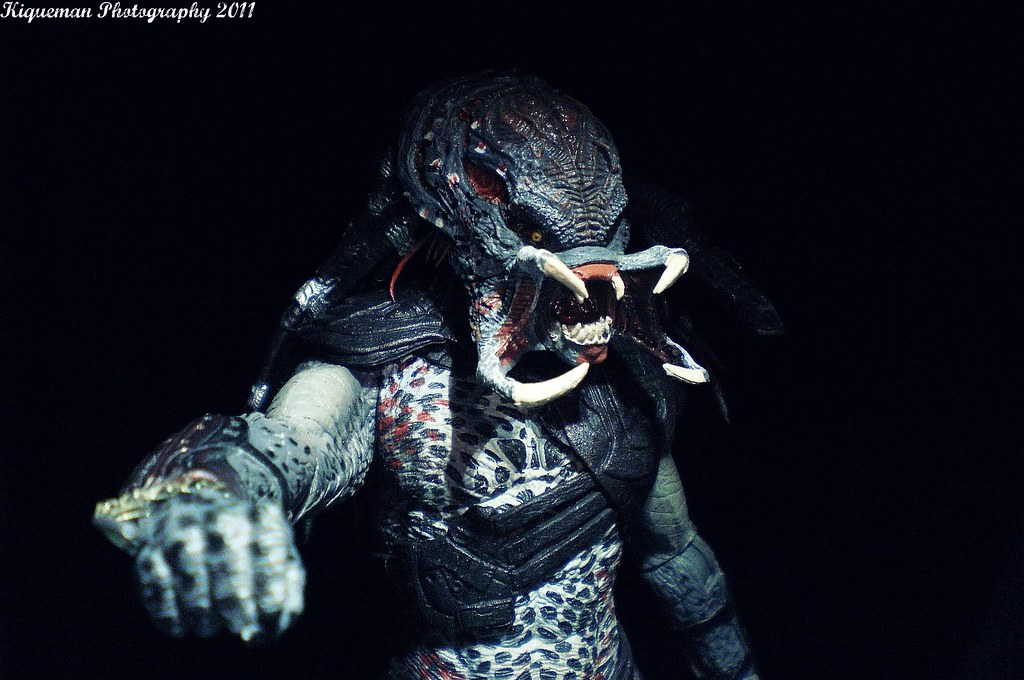 the worlds best photos of predator and stan flickr hive