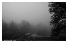 Pea Soup (ADAM TAYLOR | Photography) Tags: uk trees wild cloud mist tree nature weather misty fog clouds dark landscape soup grey landscapes kent day view natural cloudy grim britain farm wildlife united great poor foggy kingdom far