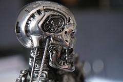 Terminator Cinemaquette T-800 - Head #371 (bernov69) Tags: metal silver skeleton robot replica cameron figure terminator figurine 13 android t2 jamescameron terminator2 cyberdyne skynet cinemaquette judgmentday 60cm 24inches t800 endoskeleton toynami efs1755usmis cyberdynesystems canonefs1755 canon40d endoskelleton skynetcyberdyne