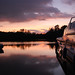 Norfolk Broads Sunset