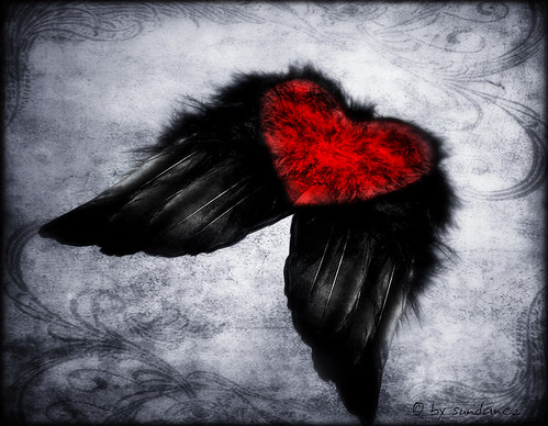 wish my heart has wings to fly