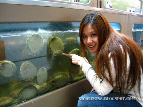 posing with abalone