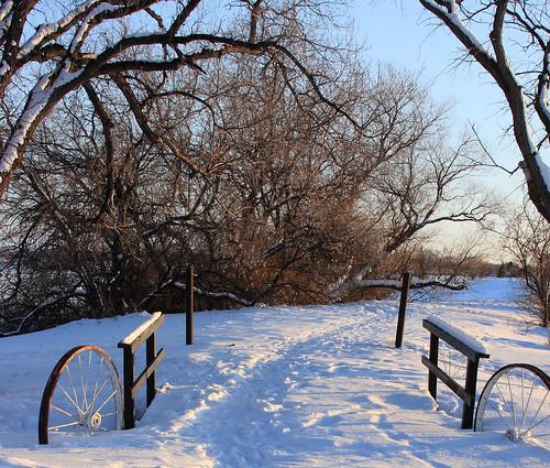 Snowy North Dakota Path