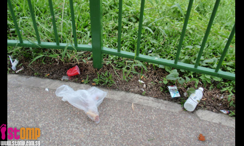 Jurong Park damaged and litter-ridden