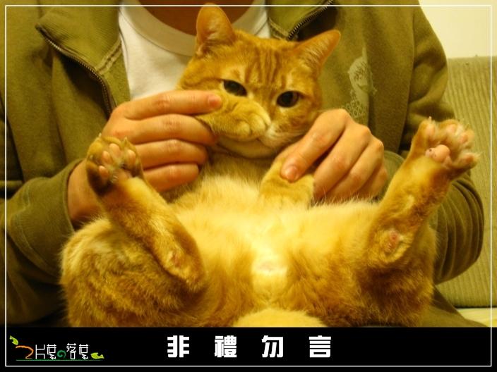 BU子論禮_03