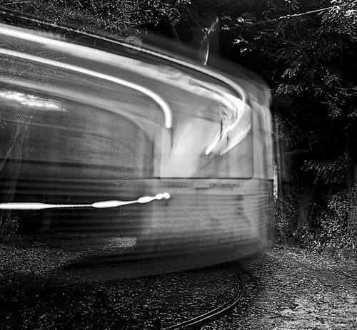 darkwood tram