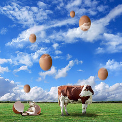 Happy Easter ! (Martine Roch) Tags: sky pet cute nature grass animal clouds easter square mouse cow egg surreal mice fairy fantasy photomontage magical manray digitalcollage petitechose martineroch creativephotoshopers
