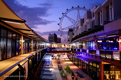 Harbour Town, Docklands (Adam Dimech) Tags: city building wheel shop retail architecture night mall shopping observation lights star evening twilight harbour outdoor dusk centre australia melbourne shoppingcentre ferris victoria southern promenade shops docklands stores clich wharfstreet harbourtown southernstar waterfrontcity southernstarobservationwheel
