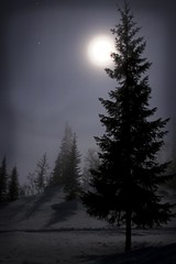 Midnight in the mountains (Aasprong Photography) Tags: longexposure blue winter moon snow tree nature norway 30 night canon easter stars eos shadows midnight moonlight seconds bluemoon steinkjer 400d canoneos400d runeaasp skjkra runea aasprongphotography