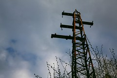 out of service telegraph pole (praimwz) Tags: rust telegraphpole sometrees