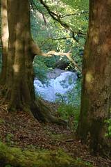 lynn falls from valley top (gordonjc) Tags: scotland falls lynn valley dalry ayrshire lynnglen northayrshire garnockvalley