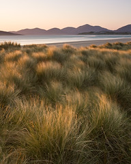 Golden Light on the dunes at Corran Sheileboist (David Kendal) Tags: sunset motion movement dunes windy sanddunes goldenhour hebrides eveninglight goldenlight marramgrass dunegrass marram luskentyre isleofharris seilebost losgaintir soundoftaransay takeaview traighsheileboist hebrideansunset marramgrasses grassbreeze corransheileboist caolastharasaigh landscapephotographeroftheyear2009
