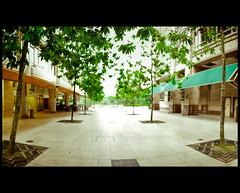 My Boulevard / Brenizer Method (FarhanYassin) Tags: trees panorama tree green beautiful leaves cafe nikon mood bokeh border iso foliage mandarin oriental curve technique klcc d3 hangout lightroom preset ryanbrenizer brenizermethod