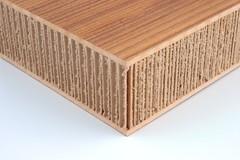 X-Board Plus Panel #4