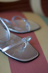 Macro fun (travelling.steve) Tags: silver lasvegas straps