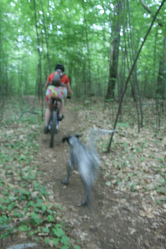 Misty and Me Mountain Biking